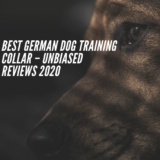 Best German Dog Training Collar – Unbiased Reviews 2020