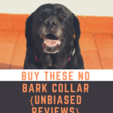 Buy These No bark collar – {Unbiased Reviews}