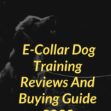 Top 7 ECollar Dog Training Reviews And Buying Guide 2020